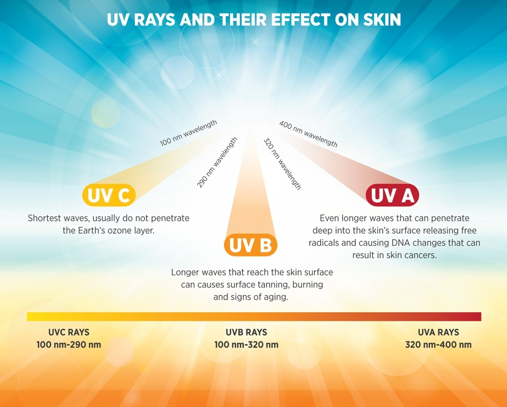 Protect The Skin From The Harshness Of The Sun