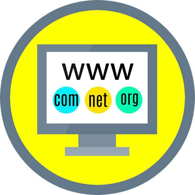 Buy Domain & Hosting Build a $30 Websites in 30 Minutes